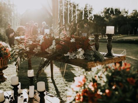 Startuoja humanistinių laidotuvių paslauga - Lydėtuvės