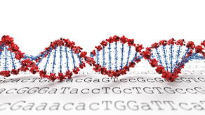 9 Ways to Improve The Success of Your Marketing DNA