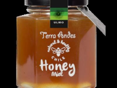 Terra Andes - Ulmo Honey 17.6 oz