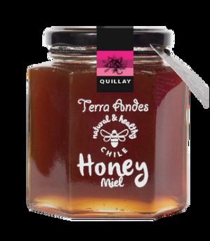 Terra Andes - Quillay Honey 17.6 oz