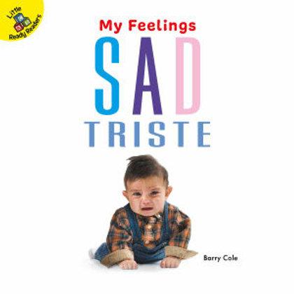 My Feelings - Sad (Spanish bilingual board book)