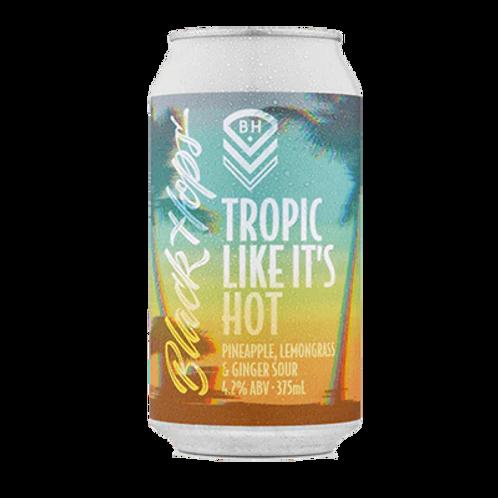 Black Hops Tropic Like It's Hot 4.2% Can 375mL