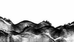 Terre de crins © OTTO IZ
