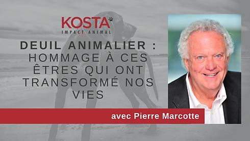Pierre Marcotte cover fb.png