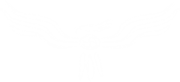 freedom logo white.png