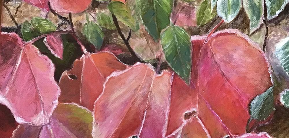 artwork of pink leaves