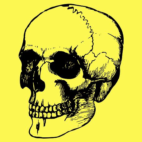 in skull.png