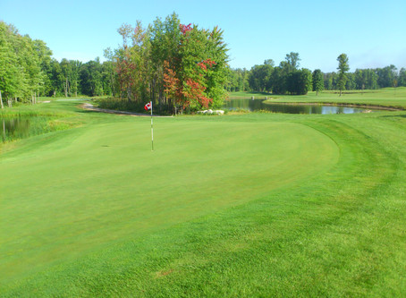 The 12-hole golf course: a smart idea for the times