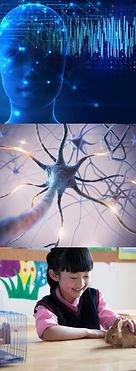 NERVOUS SYSTEM, MENTAL HEALTH, NUTRITION, EXERCISE, SLEEP, ANATHESIA, PET HEALTH, BRAIN...