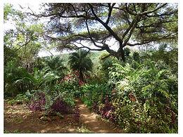 Ewanrigg National Botanical Garden