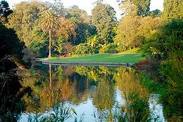 Royal Botanical Garden of Melbourne