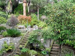 Gibraltar Botanical Garden