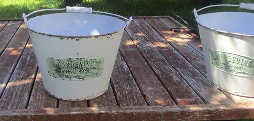 plant buckets.JPG