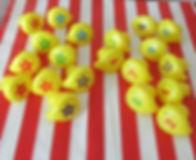 IMG_7808 ducks.JPG