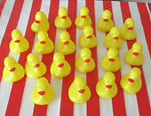 IMG_7809 ducks.JPG