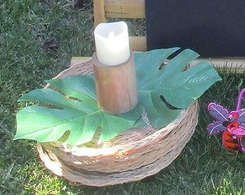 leafy trays.jpg
