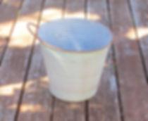 plant tin.JPG