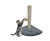 Small scratch post