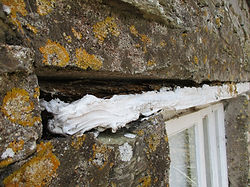 specific defect analysis rotten lintel
