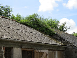 dilapidations corrugated asbestos cement roof in poor condition