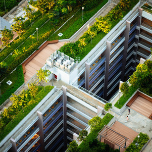Is it Possible to Live Green in the City?