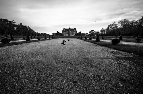 lescorbeaux du château,collection (Landscape) Tirage 90 X 60 cm, 135 x 90 plein format, Patrick Raymond