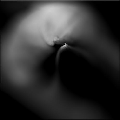 Green kiss, Tirage 90 X 90 cm, plein format, Patrick Raymond