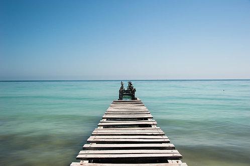 El molle viejo, El Cuyo (Yucatan)  Tirage 90 X 60 cm, 135 x 90 plein format, Patrick Raymond