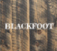 blackfoot ghostwood circle sawn
