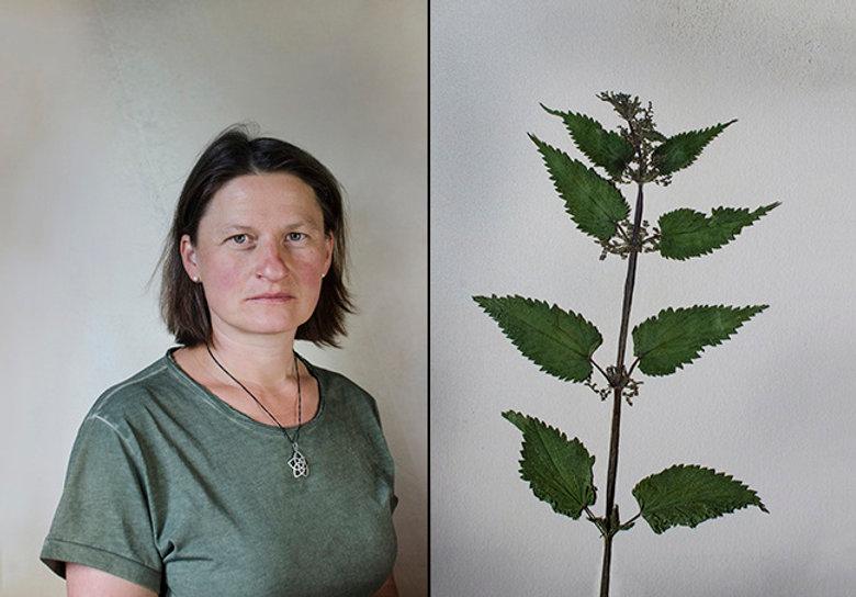 Herbarium x Symbiosis 2017. Canton of Va