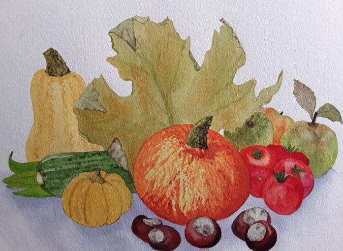Barbara Allotment autumn harvest waterco
