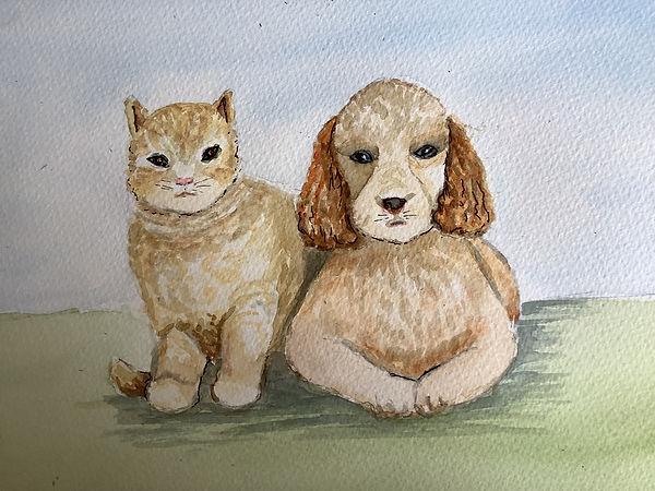 Pat Cat and Dog.jpg
