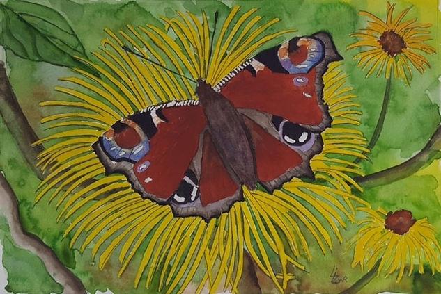Liz Peacock Butterfly wc.jpg