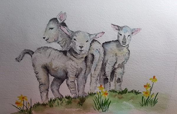 Liz baby lambs wc.jpg