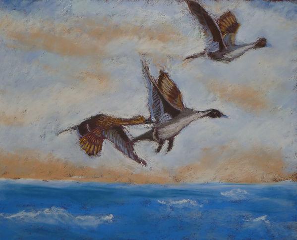 Geese flying over Norfolk pastel.JPG