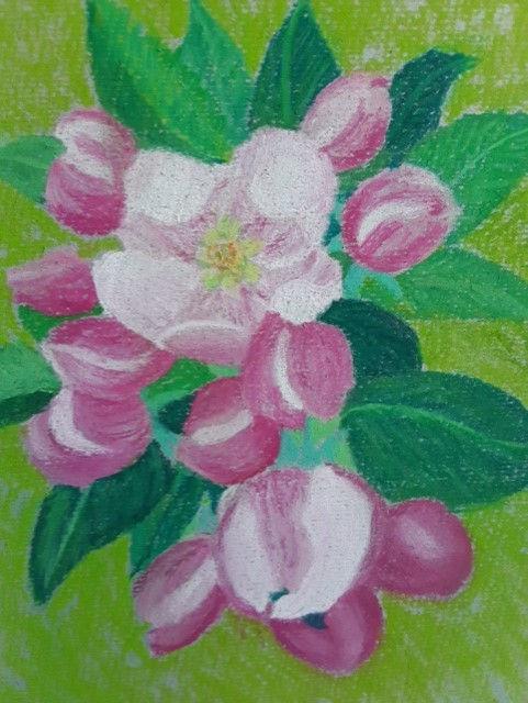 Barbara Apple blossom time.jpg