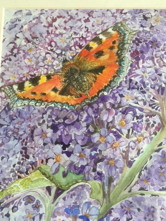Val Gudge Orange butterfly wc.jpg