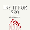 Try it for $20.png