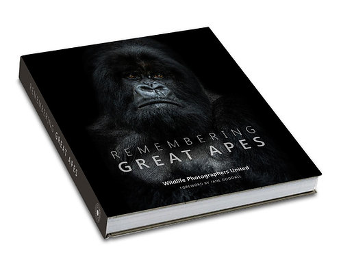 Remembering Great Apes - STANDARD EDITION