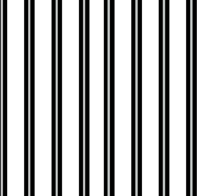 Silver Metallic Strip White