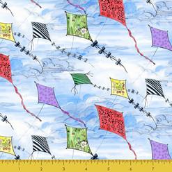 Kites Clouds