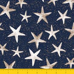 Starfish Navy