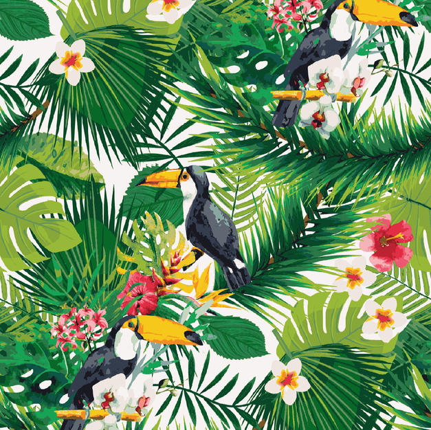 Parrot in Tropical