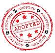 adopted-2.jpg