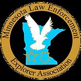 MLEEA-2020 Logo.png