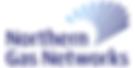 NGN Logo.png