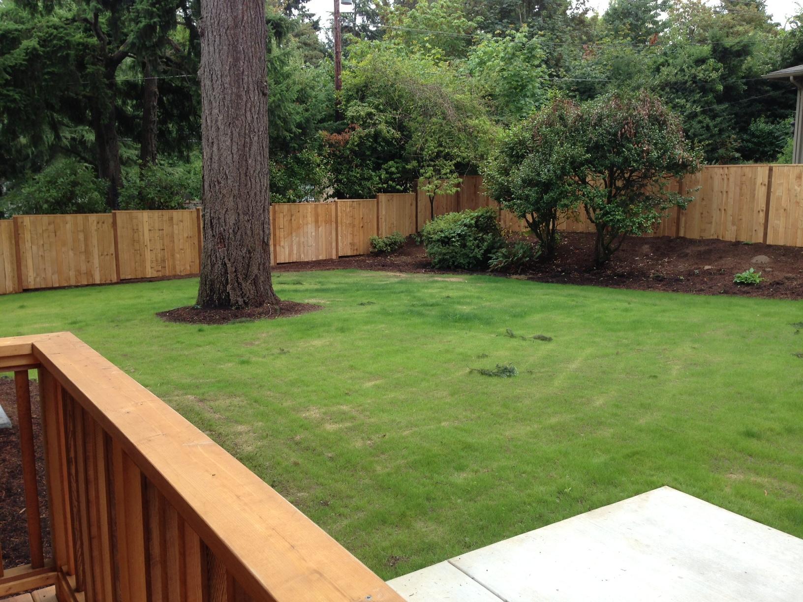 Thewelcomehouse Backyard