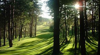 swing-golf-montenois.jpg