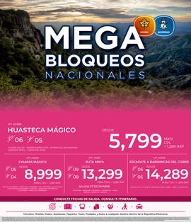 web_megabloqnal (3).jpg