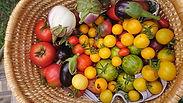 légumes 4.jpg
